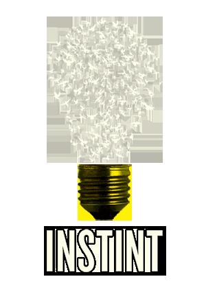 INSTINT